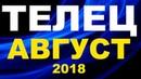 ТЕЛЕЦ ТАРО ПРОГНОЗ АВГУСТ 2018