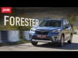 Subaru Forester ― тест-драйв с Никитой Гудковым