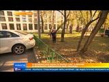 Климатический парадокс температура бьет рекорды в Москве и Петербурге