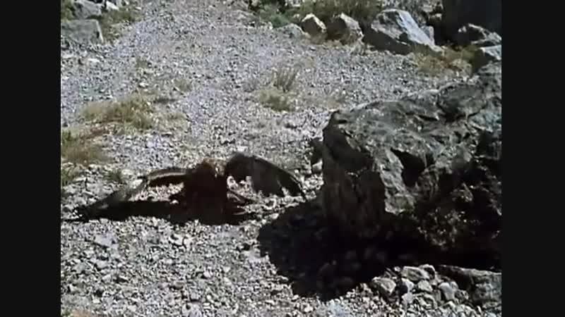 Королевство кривых зеркал. Фильм-сказка. (1963) - Молодец АнидаГ...
