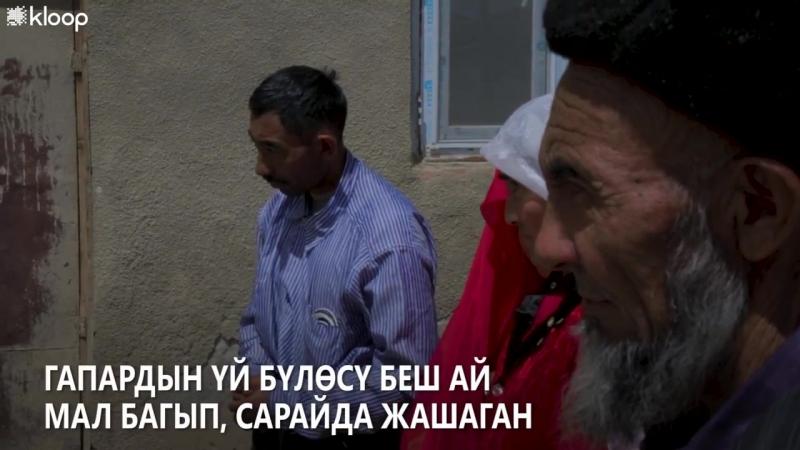 Эмне үчүн Кыргызстандан кетип аткан ооган кыргыздары кайра кайтууну каалашпайт