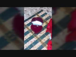 Video_20181230200949324_by_videoshow.mp4