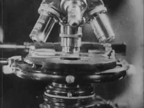 Основы молекулярно кинетической теории Броуновское движение Техфильм 1937 немой фильм