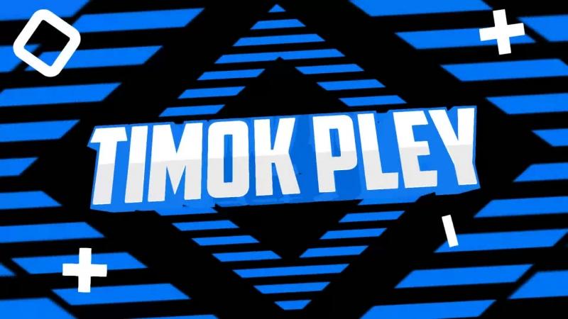интро Timok Pley