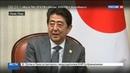 Новости на Россия 24 • Восточный вектор: Путин встретился с лидерами Японии и Китая