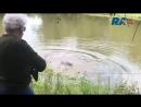 Женщина мэр из Техаса убила огромного аллигатора из за давней обиды