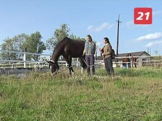Удивительные лошади. Знакомимся с любимицами Ксении Середовой
