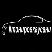 tonirovkaysani