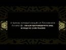 Шейх Мухаммад Насыруддин аль Альбани - брить бороду-это один из тяжких грехов.mp4