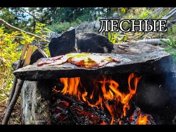 Дикая кухня КАМЕННАЯ ПЕЧЬ Bushcraft Stone Kitchen