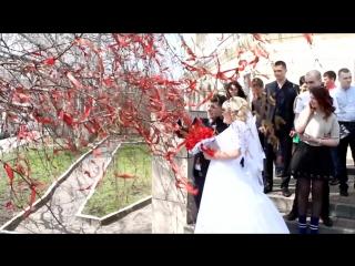 Свадьба Олега и Кристины