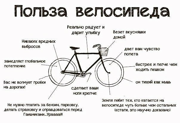 польза велосипеда в городской жизни и путешествиях на природе