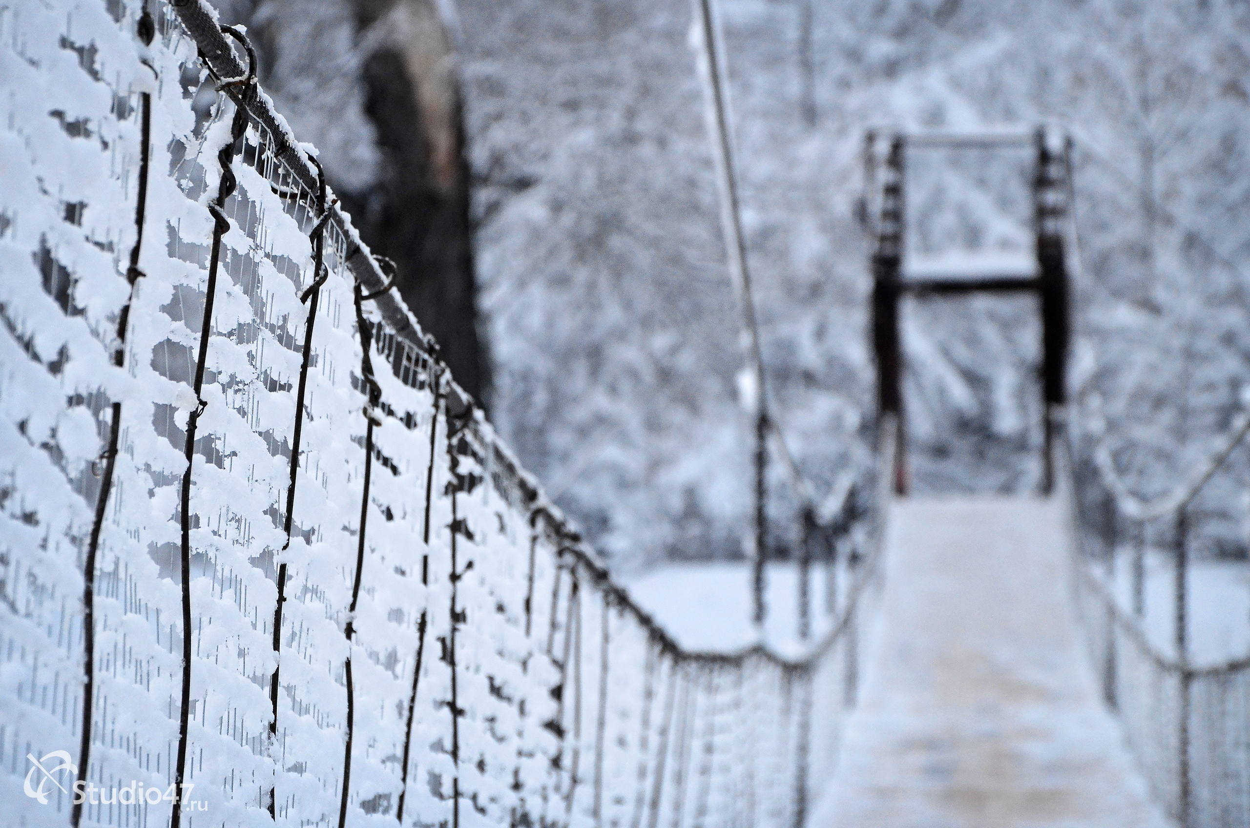 Подвесной мост в Борисоглебске