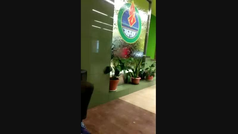 Video-4df0859991e31cddc8c913e2c20c2728-V.mp4