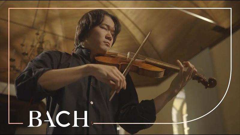 Bach - Violin Partita No. 2 in D minor BWV 1004 - Sato   Netherlands Bach Society