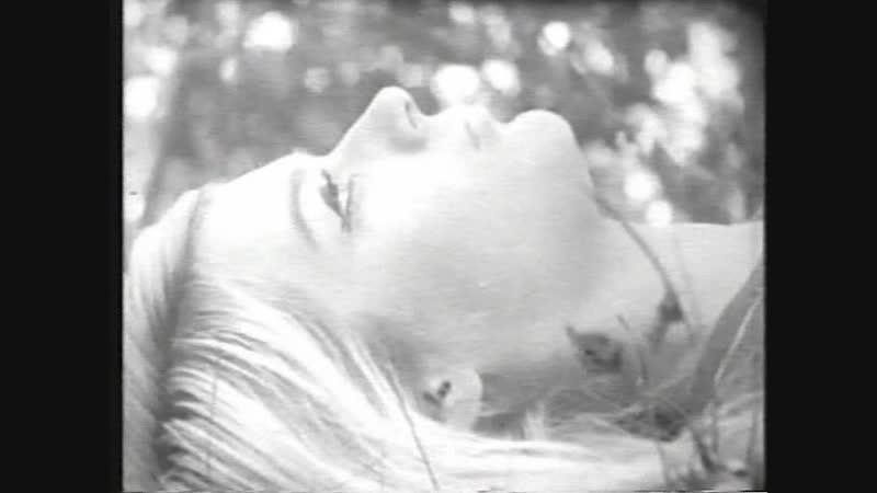 04 Vladimir Momcilovic - Igra Ljubavi