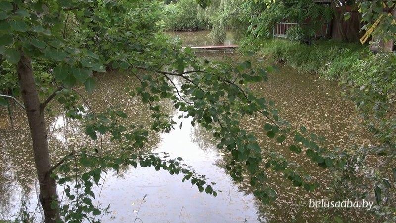 Усадьба На Родниковой - пруд, Усадьбы Беларуси