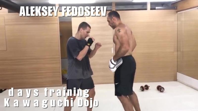 Алексей Федосеев в Кавагучи Доджо