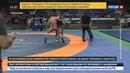 Новости на Россия 24 В Краснодаре молодые борцы вольного стиля сошлись в рукопашной
