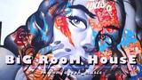 EDM BIG ROOM MIX - Electro House &amp Dance Music 2017