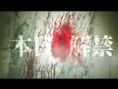 SINoALICE - Drakengard3 Collaboration PV4