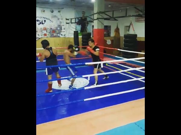 Box Boxing AZE BOXİNG