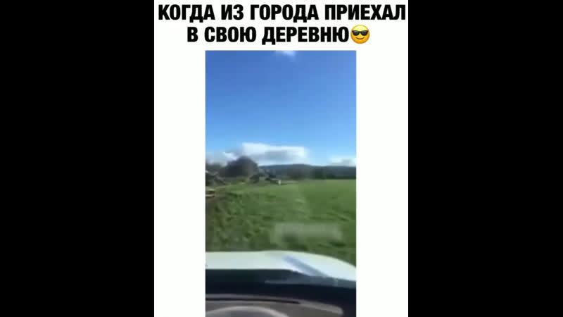 Первый парень на селе))