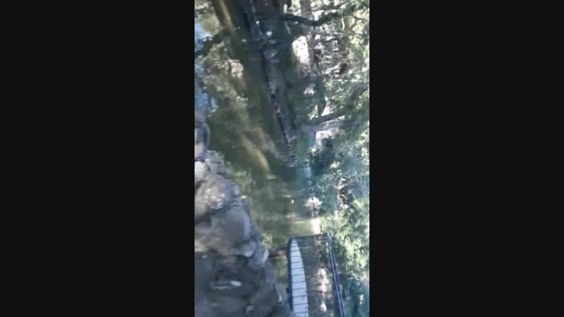 Крым лебедушка