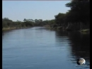 Дельта реки Окаванго Лучший отдых в Ботсване Okavango Delta mir priklyuchenii zabota scscscrp