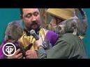 Зов джунглей Котята и обезьянки Московского иллюзионного театр зверей и птиц Артемон 1993