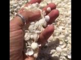 Вместо гальки и песка пляж Шелл-Бич на территории Акульей бухты покрыт мелкими белыми морскими ракушками.