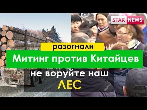 Разогнали Митинг против вырубка леса Китайцами май Россия 2018