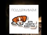 День защиты животных - 4 октября