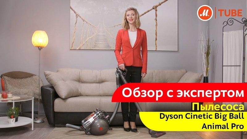 Обзор пылесоса Dyson Cinetic Big Ball Animal Pro с экспертом «М.Видео»