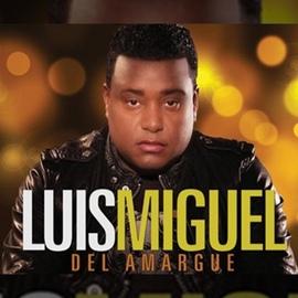 Luis Miguel Del Amargue альбом La Única