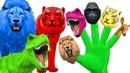 Colors Dinosaurs Gorilla Animals Finger Family Rhymes Mega Finger Family Collections For CHildren