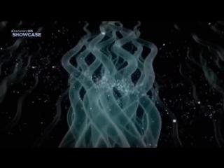 Физика невозможного. Путешествие во времени и теория относительности. Фильм Discovery HD 17.11.2016