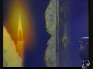 Николай Носков. Свеча горела на столе (Зимняя ночь) (Москва. Кремль. Концерт с симфоническим оркестром)