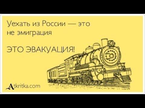 Большой исход российских умов. Путин вынуждает бежать из России образованных людей