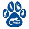 Смайл | Ветеринарная клиника | Иркутск