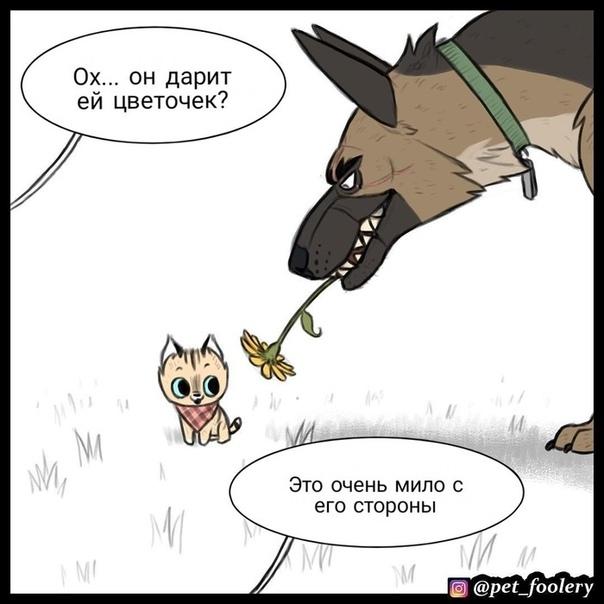 Цветочек Иллюстратор: pet_foolery