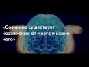 Крамольные факты о сознании Шокирующие цитаты нейробиологов о мозге и сознании человека