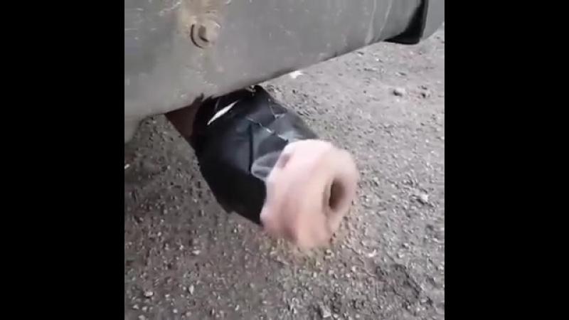 Пизда в выхлопной трубе прикол