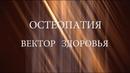 Остеопатия вектор здоровья документальный фильм