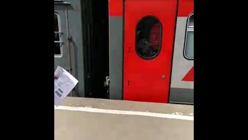Перуанцы садятся на Мордовский поезд
