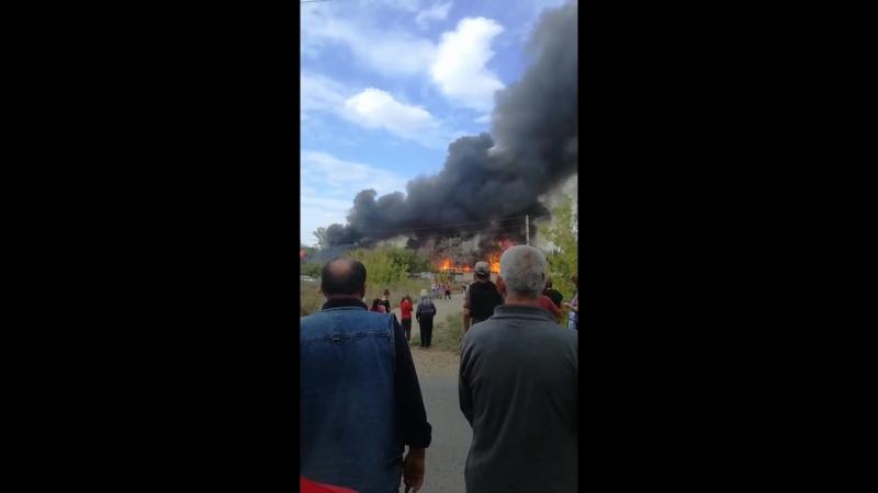 пожар в Донгузе_2