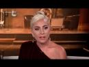 2018 Lady Gaga A Star Is Born - Fandago Gagavision