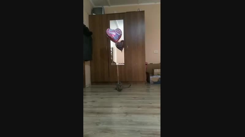 Дастин и шарик 1