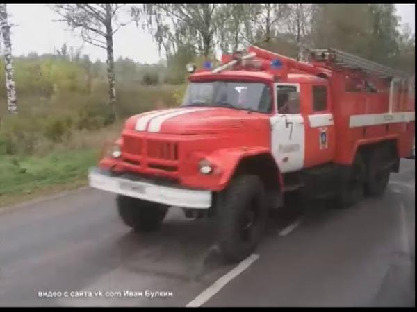 В Ярославле дерево упало на здание спортшколы