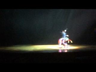 Cirque du Soleil с шоу OVO